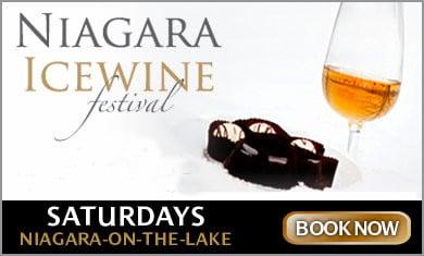 Niagara Icewine Festival Tour