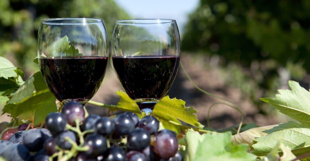 Joseph's Estate Wines