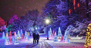 Winter Festival of Lights Displays